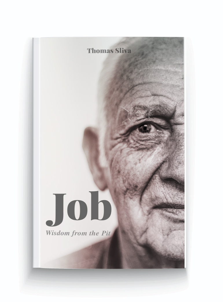 book-cover-job-wisdom-from-the-pit